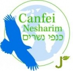 Environmental Activism Logo Jewcology - Jew...