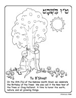 tu b shvat coloring pages - photo#3