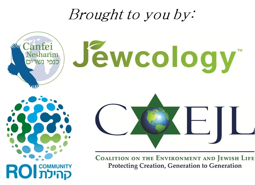 Year of Jewish Policy Engagement on the Environment