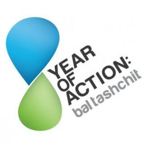 year of action logo