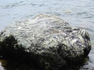Acadia gray boulder