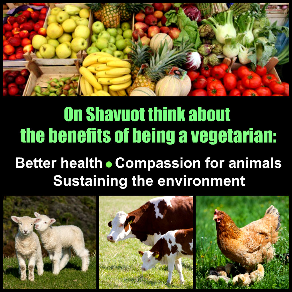 Jews who wish to live lives consistent with Torah teachings should sharply reduce or eliminate their consumption of animal products. Such a dietary shift would help revitalize Judaism by showing the relevance of eternal Jewish teachings to current issues, improve the health of Jews, and shift our precious but imperiled planet to a sustainable path.