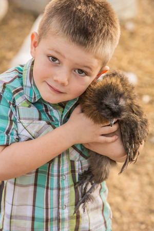 Boy loves his pet chicken