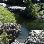 Bear Hole, Bidwell Park, Chico, CA