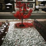 First snow of the season, Julie Danan